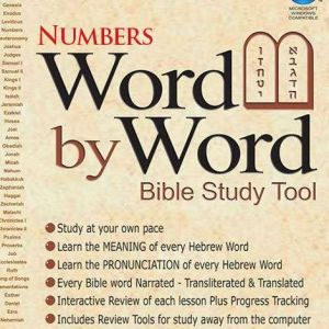 word by word bible study tool - numbers