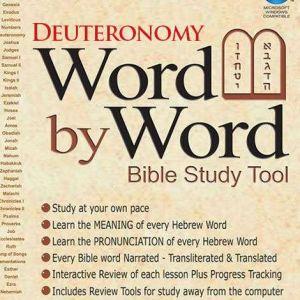 word by word bible study tool - deuteronomy - devarim
