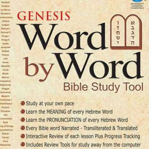 word by word bible study tool