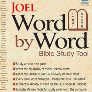 word by word bible study tool - Joel, Yoel